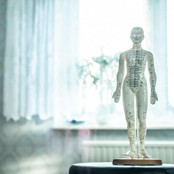 gabinet fizjoterapeuty